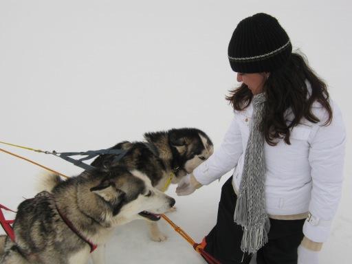 Eu e os cães que puxavam meu trenó durante o passeio em Villarica no Chile