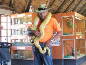 Guia apresenta a Píton no Croc City próximo a Joanesburgo