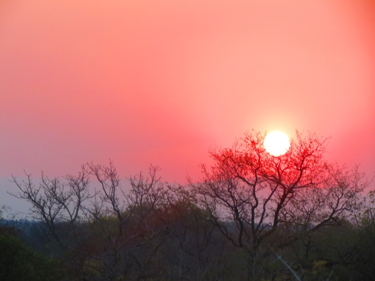 Pôr do Sol na Savana durante safari na África