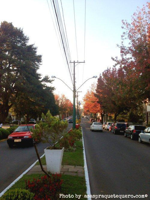 Atrações de Gramado e Canela Canela outono