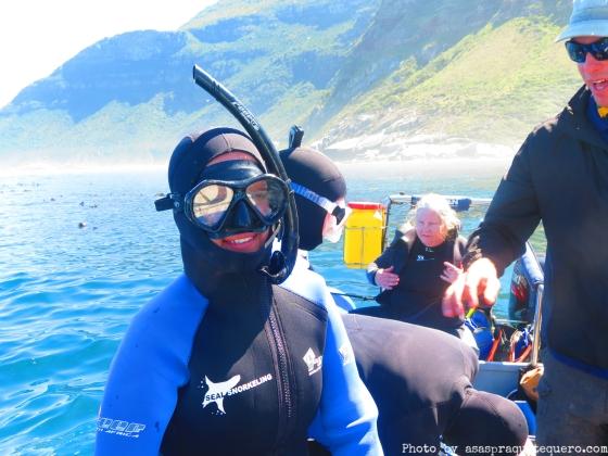 Mergulho com leões marinhos Cape Town (3)