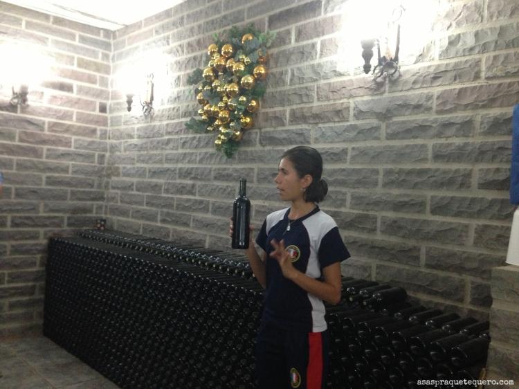degustação de vinhos na serra gaucha jolimont 3 (2)