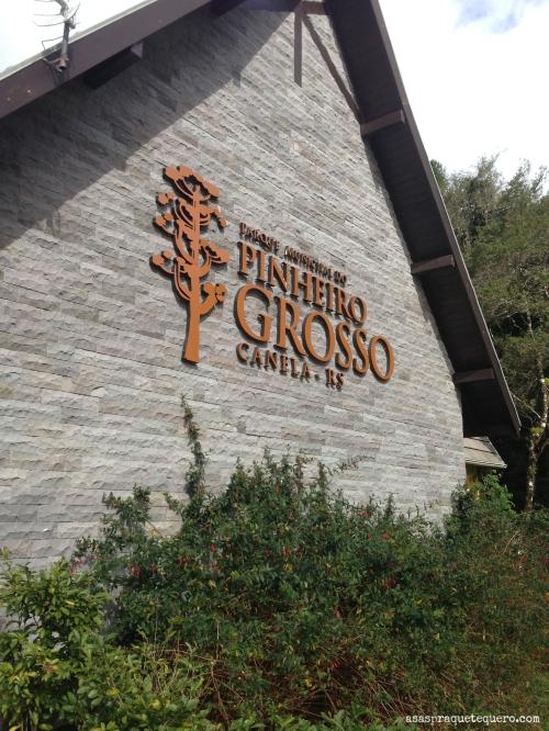 O que fazer em Canela Pinheiro Grosso (2)