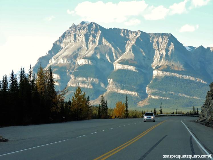 roadtrip-dirigir-icefields-parkway-10