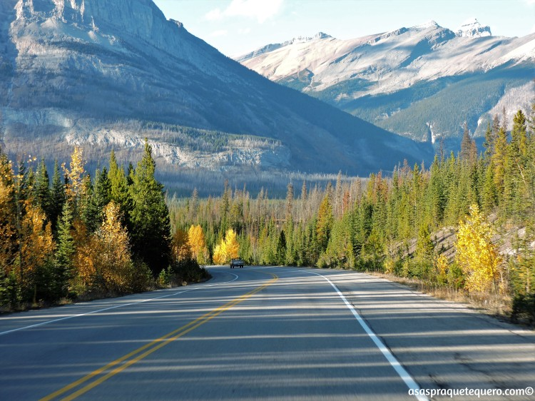 roadtrip-dirigir-icefields-parkway-11