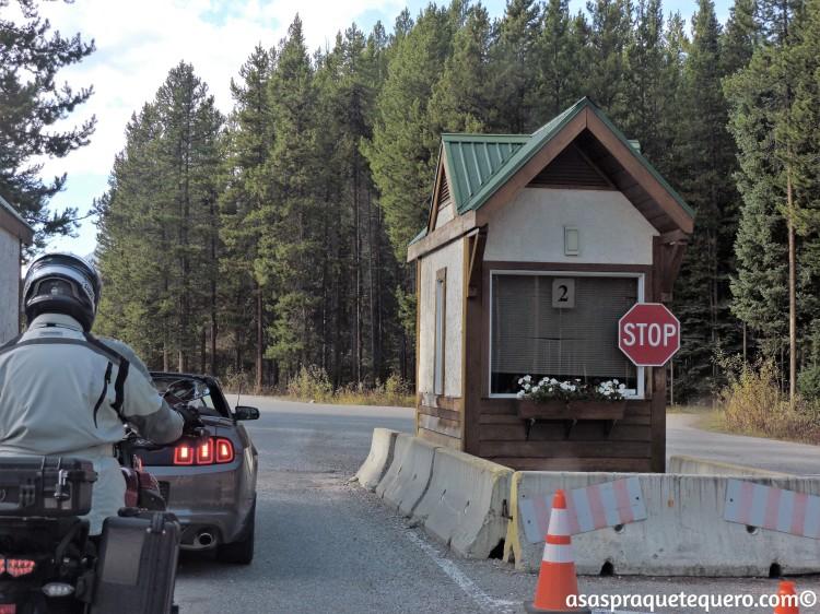 roadtrip-dirigir-icefields-parkway-3