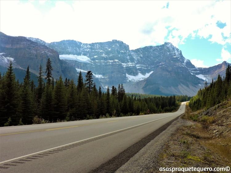 roadtrip-dirigir-icefields-parkway-6