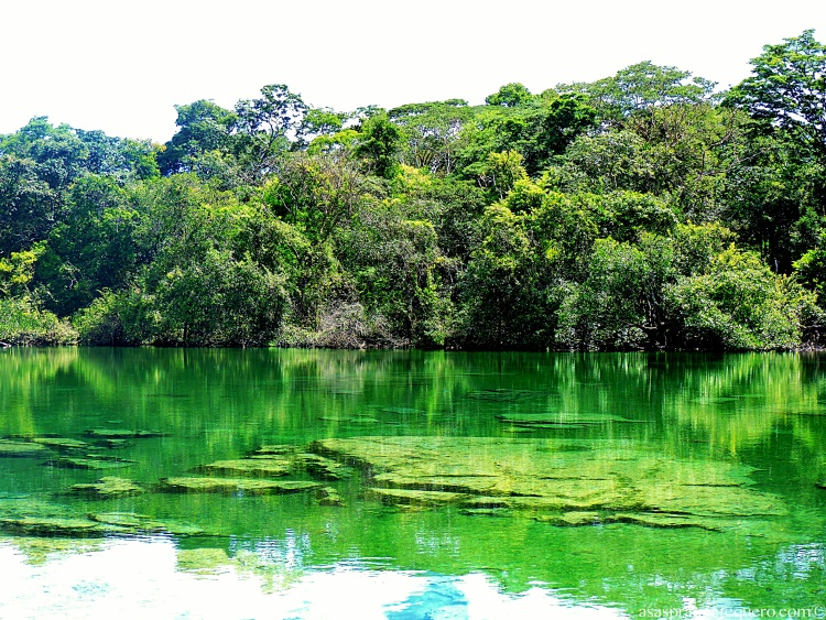 Lagoa do Japonês